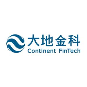 重庆大地金融科技